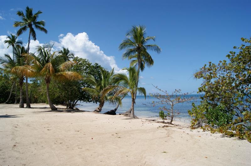 beach.  Swim area is more to the left.