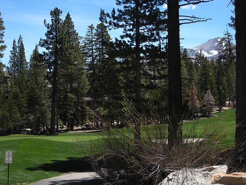 Bigwood Borders Sierra Star Golf Course