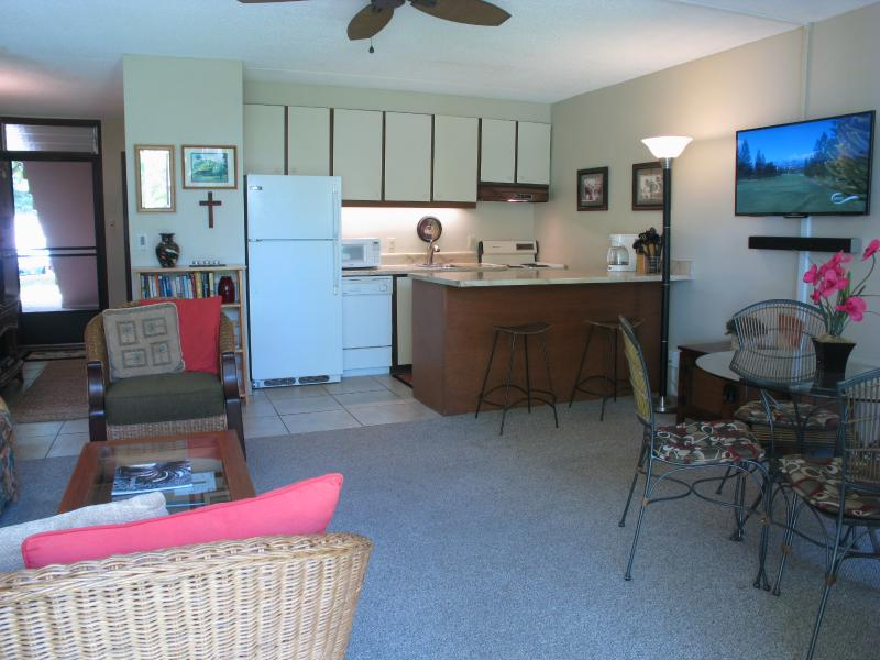 Open kitchen, living, dining room area