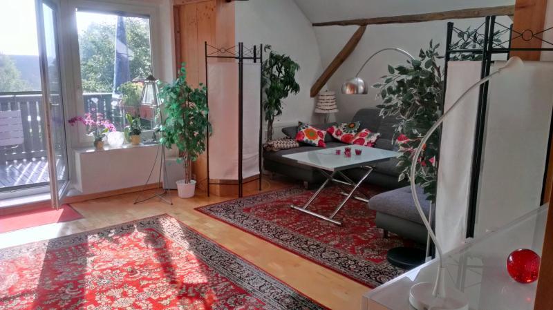 Wohnzimmer ca. 35 m² mit Wohnlandschaft (Schlafen für bis zu 3 Personen), Parkett, Holzbalkendecke,