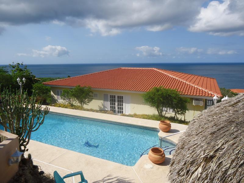 Blue Magna Pool ,blue sky, blue sea. Thats what you get at the Caribbean Blue Sea Villa.