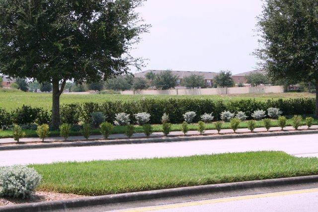 Villa Approach 5