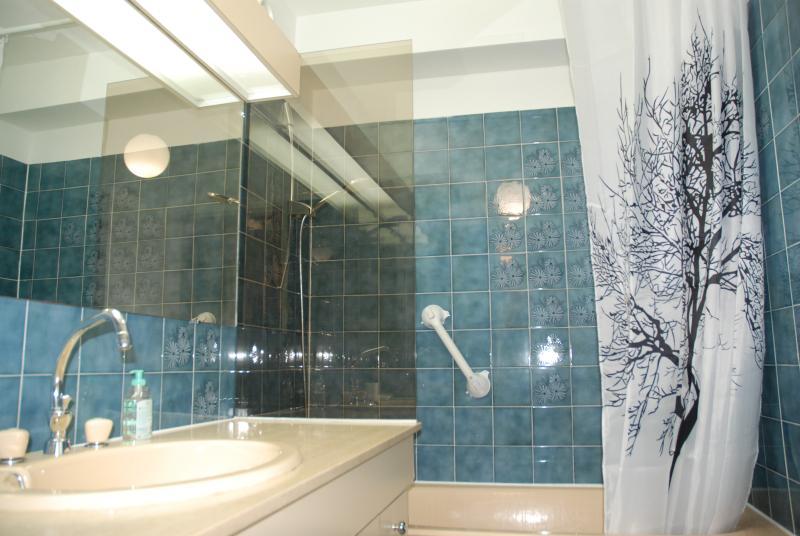 Salle de bain muni d'un sèche serviette