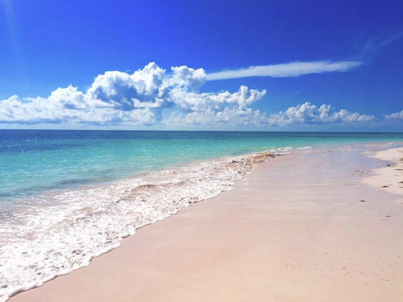Your Beach at Ocean Daze!