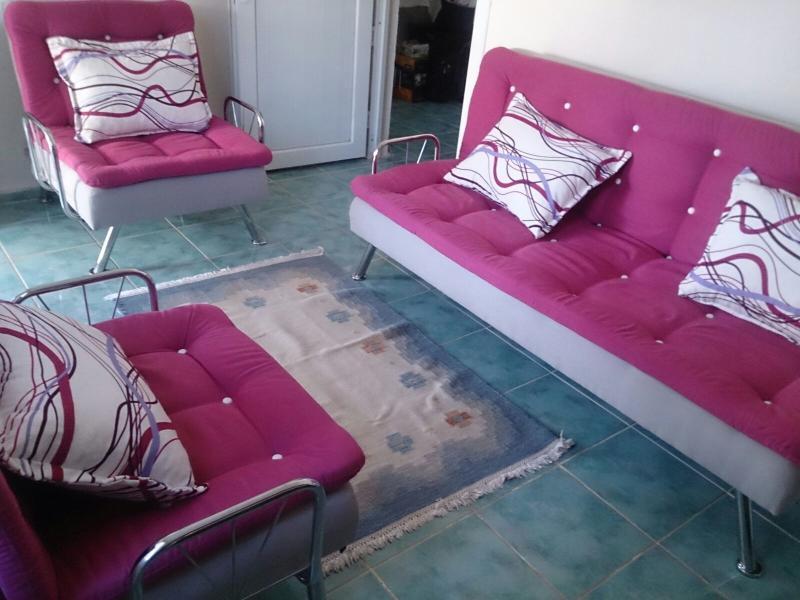 Summer house with private garden !, location de vacances à Mavisehir
