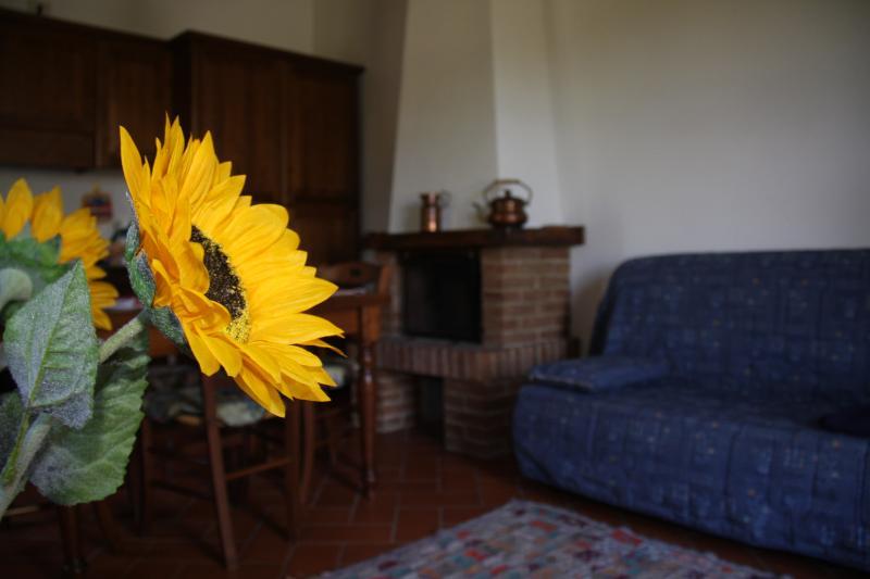 Podere Chiusella 2 persone 'Granaio', aluguéis de temporada em Rapolano Terme
