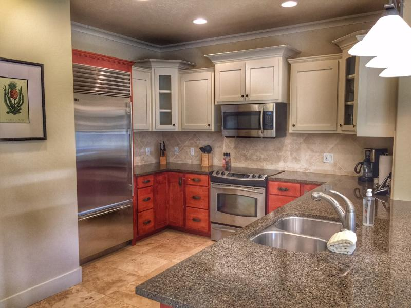 Gourmet kitchen with high end appliances and granite countertops