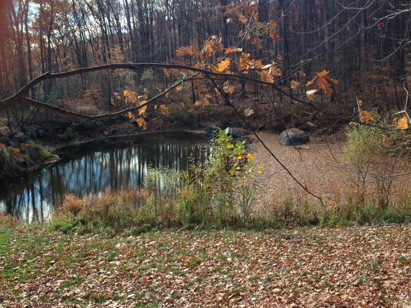 Caída, nuestro estanque privado