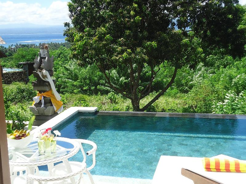 Villa Nusa Kecil pool and ocean beyond