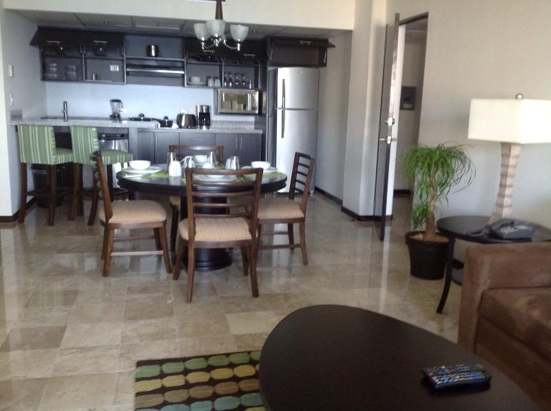 Elite equipped kitchen & Dn/Lv rms. Daily maid serv. Murphy bed is off camera, next to couch.