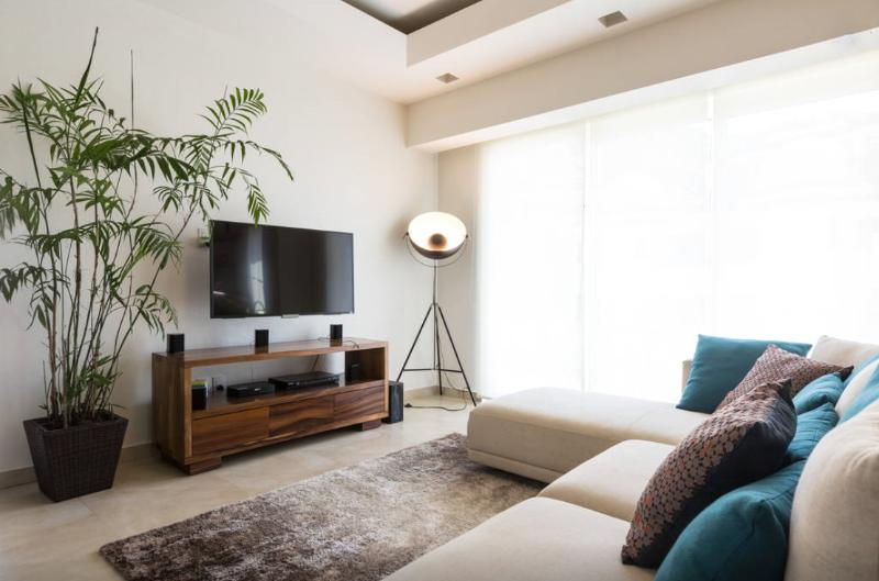 Flat TV and queen sofa bed