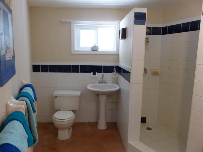 spacious bath with walk in shower