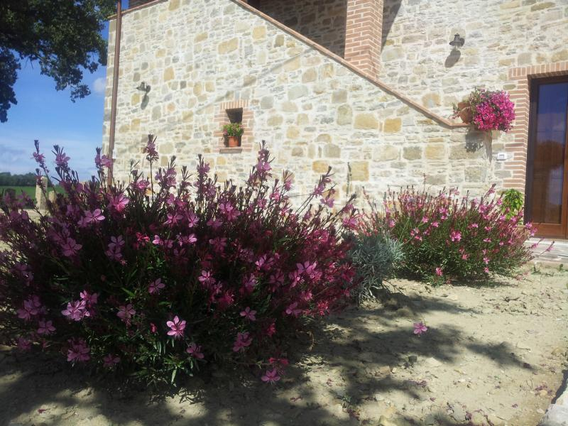 B&B Il Ciocco - Bed and Breakfast Assisi e Gubbio, holiday rental in Nocera Umbra