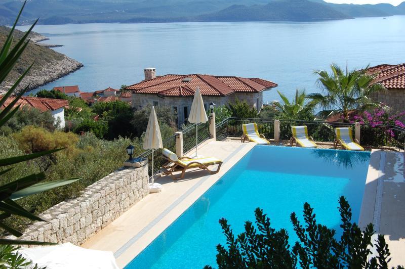Villa Hippo pool