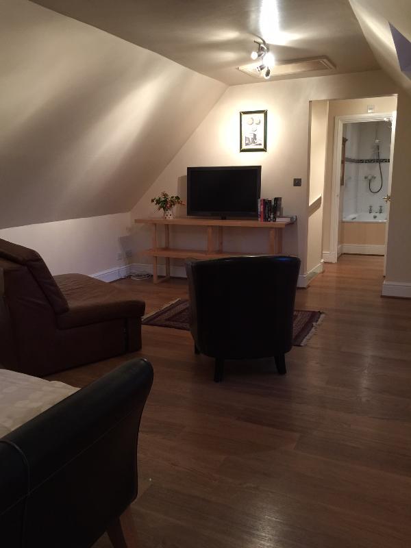 Freesat TV, sofá de couro e poltrona na área de estar