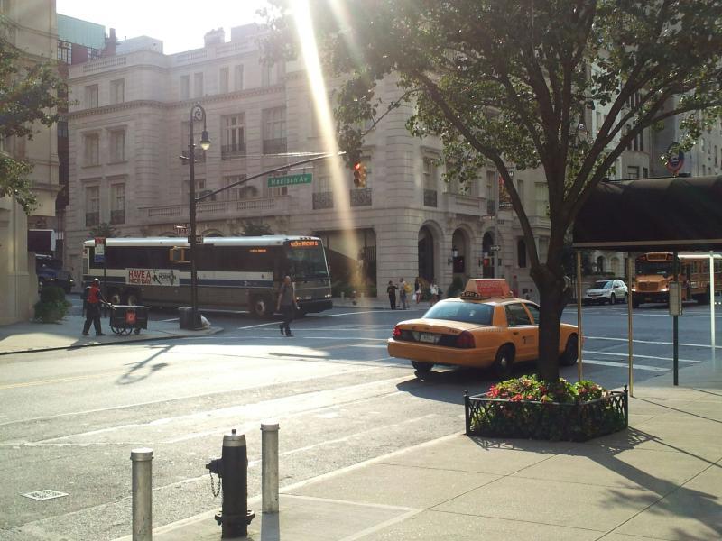 Avenida Madison