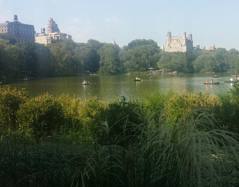 Gorgeous Central Park a block form the apt Mason .