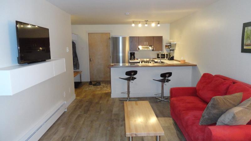 Newly renovated 1 bedroom condominium, holiday rental in Purgatory