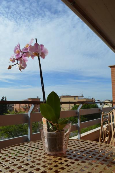 L ' orchidea di Ale, Ferienwohnung in Marco Simone