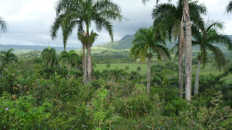 experience the Dominican countryside