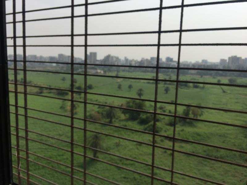 green expanse from all windows  behind the club