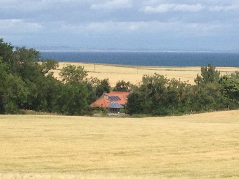 FALSIDE SMIDDY nestled in Summer barley fields.