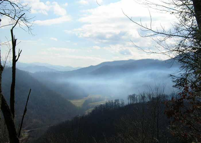 Foggy morning view of Conley Creek Valley