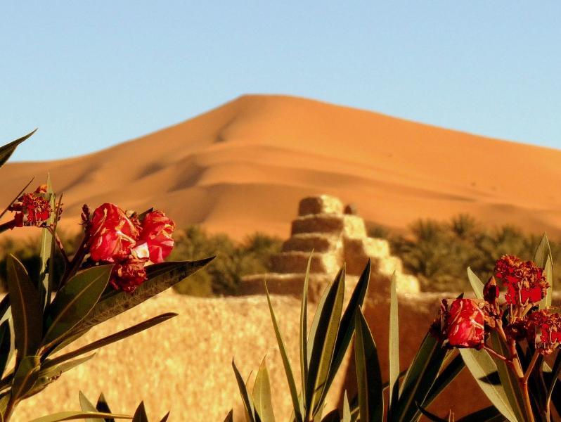 La Vallée des Dunes - Chambre familiale, vacation rental in Merzouga