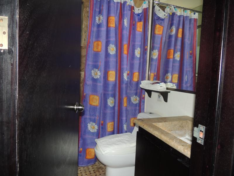 bathroom with shower, the apartment has 2 bathrooms