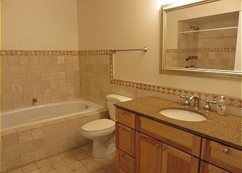 Main Floor Master Bath.