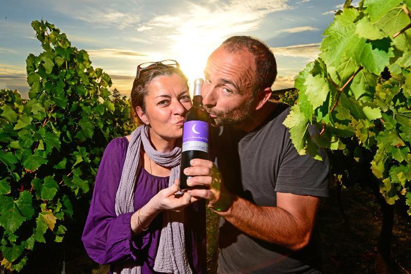 Ti faremo scoprire se preferite i nostri vini attraverso una degustazione in cantina...