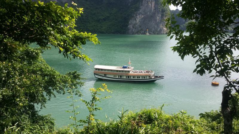 Jewel cruise can make tropical dreams happen...!