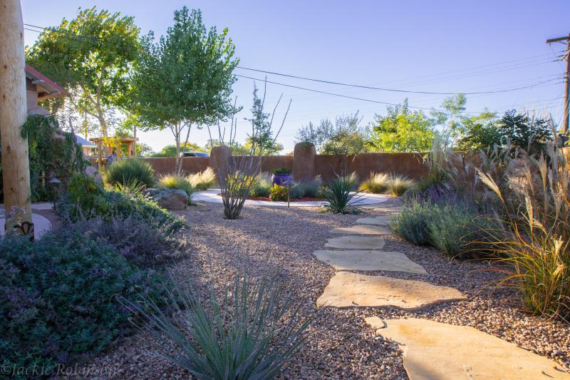 Garden view.  Lavish landscaping with plants native to New Mexico.
