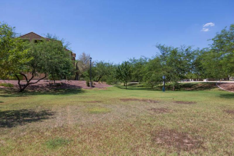 Grassy area and dog run in front of the townhome