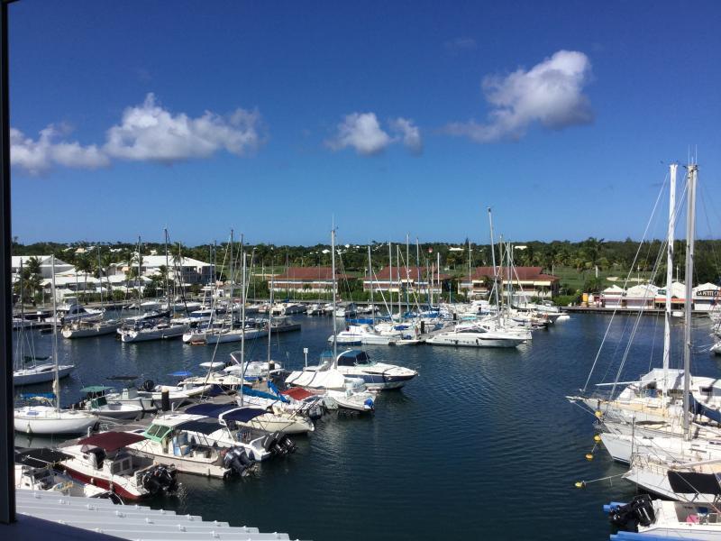 vue panoramique sur bateaux et golf