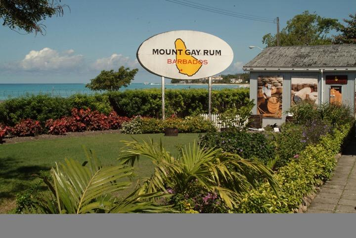 Enjoy the mount gay rum tour