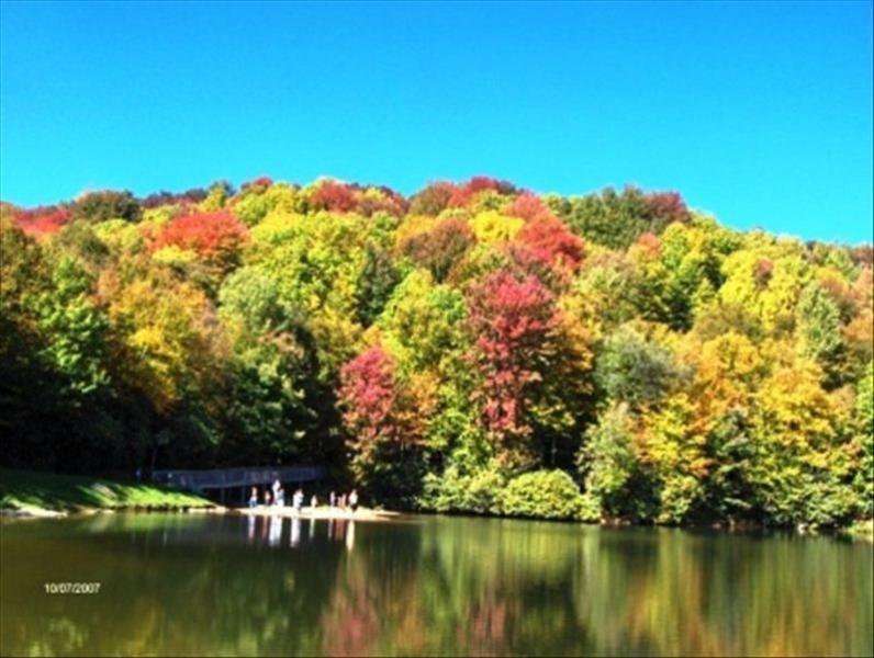Situé à quelques pas du lac Coffey pour la pêche, location de canoë, de basket-ball, piscine, centre de fitness, tennis