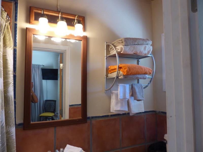 one of 3 private bathrooms in the 3 studios