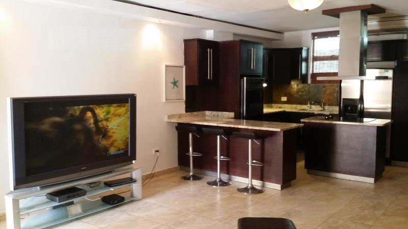 Equipped Kitchen and 63 in TV