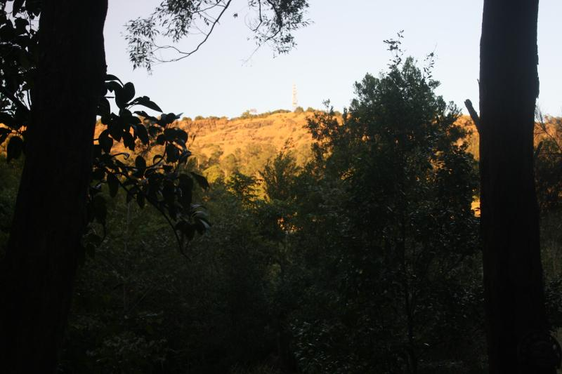 View from the backyard of morning sun on the mountain range above.
