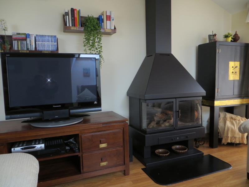 Chimenea, TV Satélite, TV y DVD con sonido Sourround