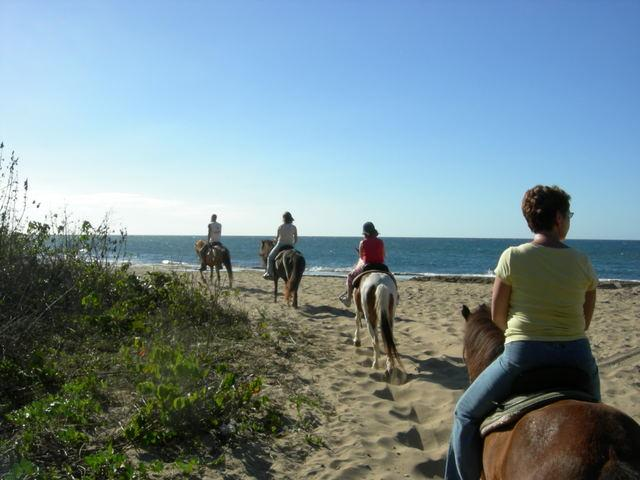Tropical Trail Rides ~ 2 beach rides daily, 5 minute walk from the house