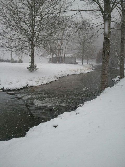 Creek in winter