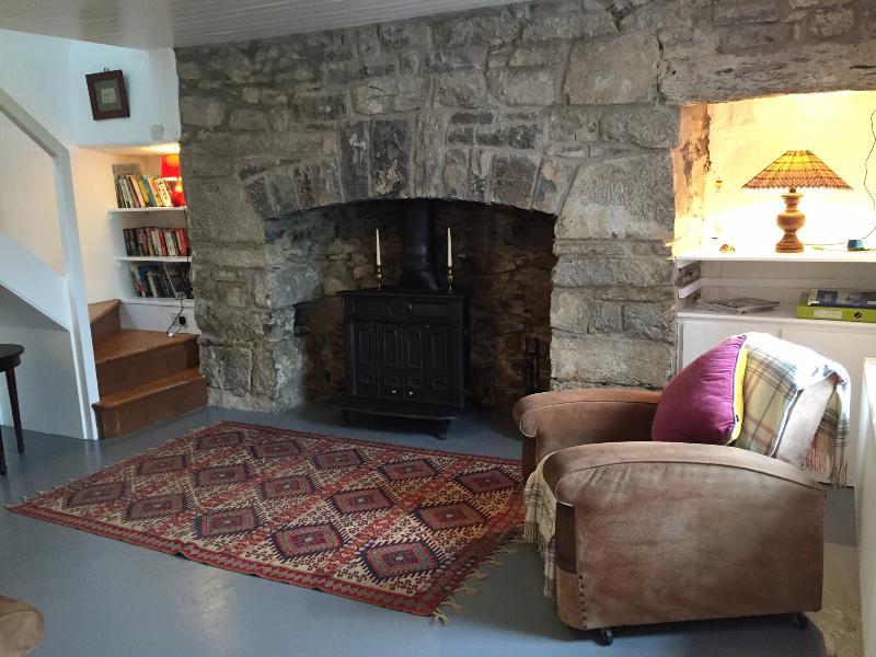 Salon avec cheminée, livres, jeux et informations locales