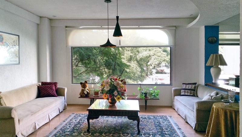 Le salon dispose d'une vue ; deux des jacarandas qui transforment lila chaque printemps.