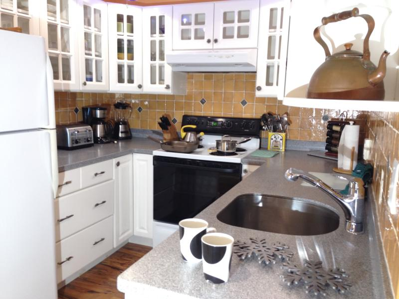 Great Kitchen - just make yourself at home!