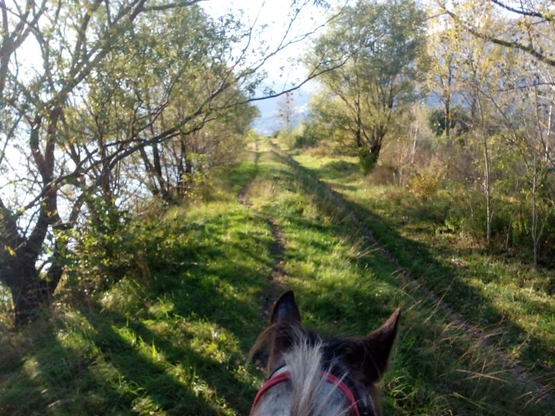 Join us with your horse and enjoy the surrounding paths.