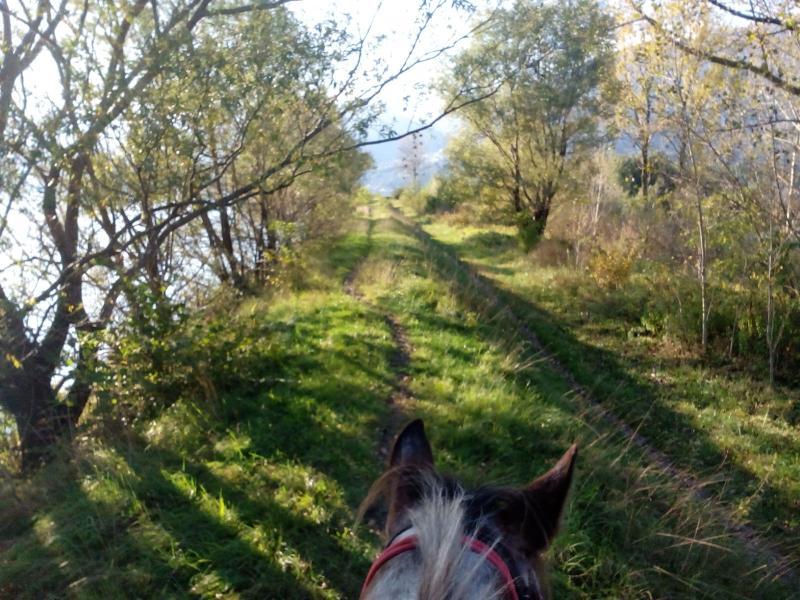 Raggiungeteci con il vostro cavallo e godetevi i percorsi limitrofi.
