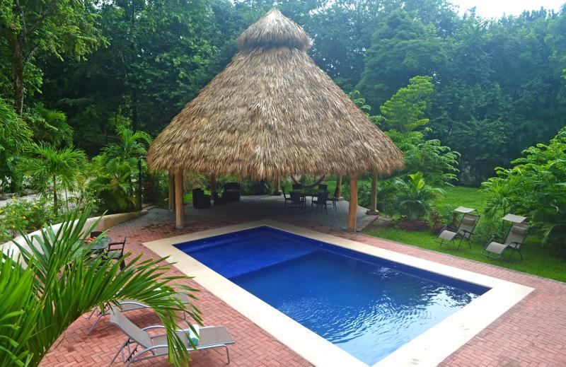 Notre piscine tropicale et le tiki hut à quelques pas de la terrasse.