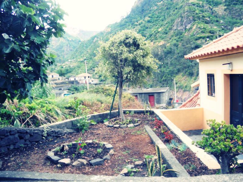 House (BlueSky), holiday rental in Ribeira Brava
